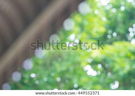 Light shining on tree leaves. Booked Blur Abstract Background. Green leaves Summer Spring Background. Focus Bokeh Background.