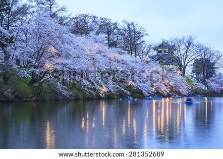 Light up of Takada Castle and Cherry blossoms, Niigata, Japan