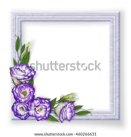Light wooden photo frames and purple flowers eustoma, Irish Rose. Flower composition. - stock photo