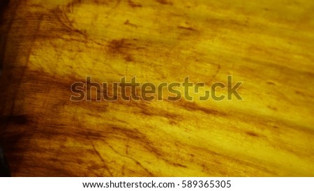 Light yellow, brown, banana leaves, texture, background