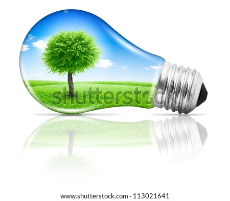 Lightbulb with a tree growing on field under blue sky inside - stock photo