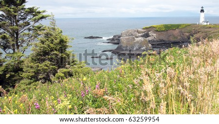 Lighthouse above a rugged beach with green meadow on hillside in foreground - stock photo