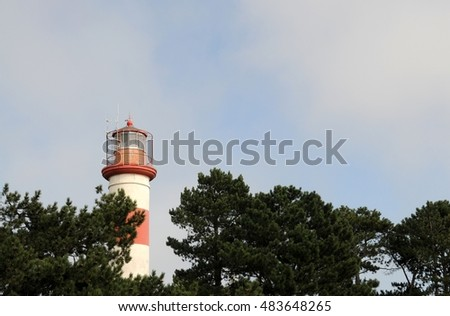 Lighthouse head protruding from pine trees tops