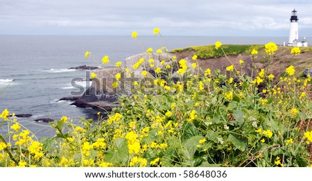 Lighthouse in distance on rocky cliffs overlooking rugged beach with yellow flowers in foreground - stock photo