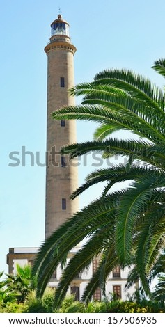 Lighthouse in Maspalomas with palm in front, Gran Canaria