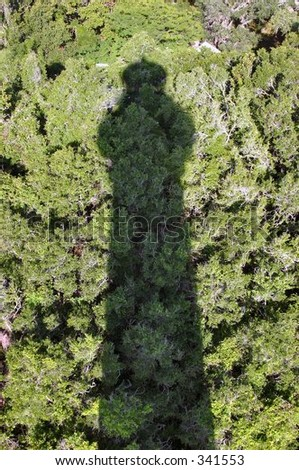 lighthouse shadow on the trees - stock photo