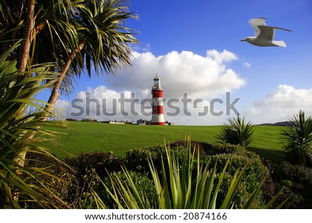 lighthouse with a palm tree and with seagull on the sky, Plymouth, UK - stock photo
