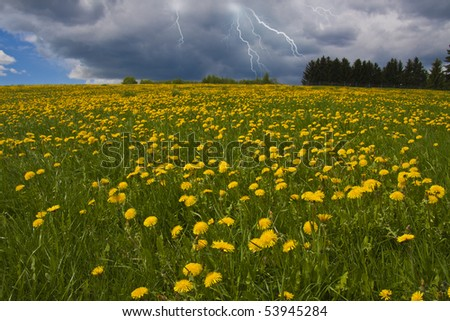 Lightning on a meadow in Norway - stock photo