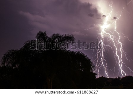 Lightning storm long exposure Tree silhouette