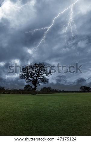 Lightning strikes above a tree on a stormy day. - stock photo