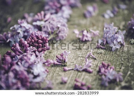 Lilac blossoms on a natural wood background