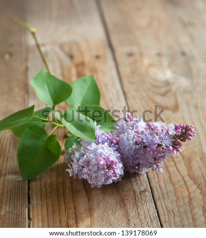 Lilac branch on wooden table. Selective focus. - stock photo