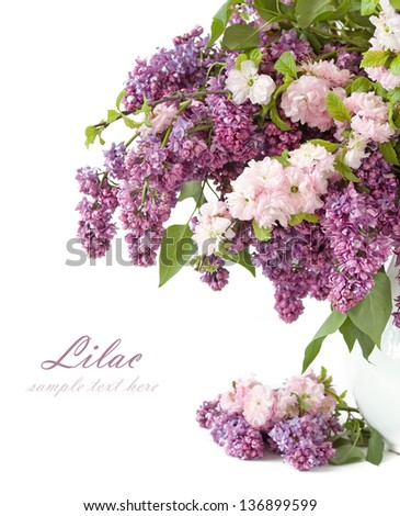 Lilac flowers and blossom tree bouquet isolated on white with sample text. Mother Day