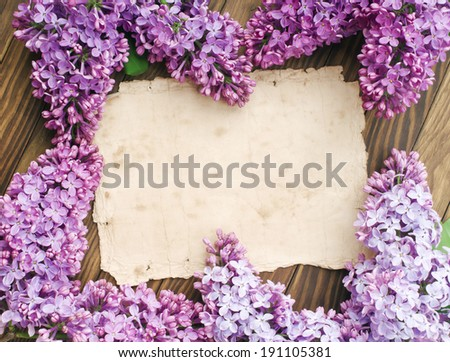 Lilac flowers branch with sample text - stock photo