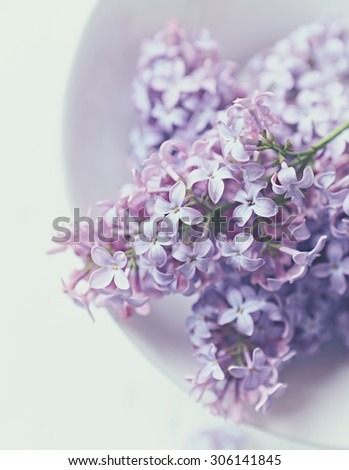 Lilac flowers in a bowl; close up - stock photo