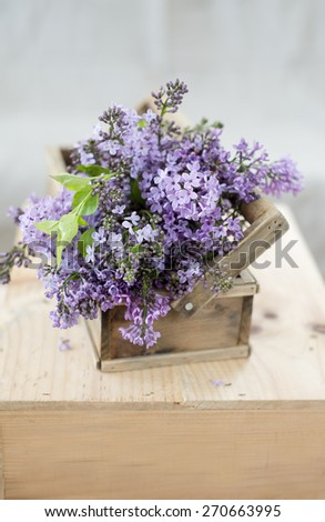 Lilac flowers in a vintage box - stock photo
