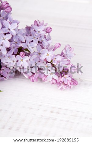 lilac flowers on wooden background - stock photo