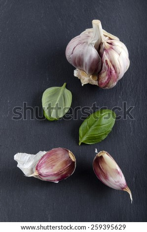 lilac garlic and basil leaves on slate - stock photo