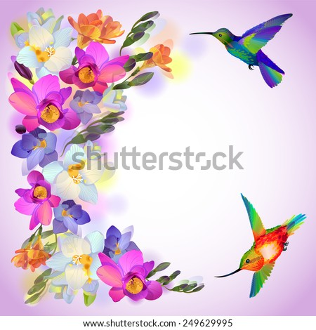 Lilac greeting background with flitting humming bird with and beautiful freesia flowers - stock photo