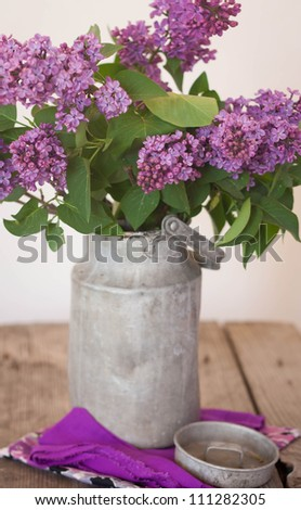 Lilac in a milk churn - stock photo