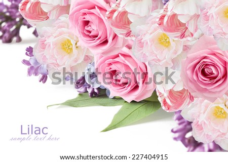 Lilac,tulip and rose flowers background isolated on white with sample text - stock photo
