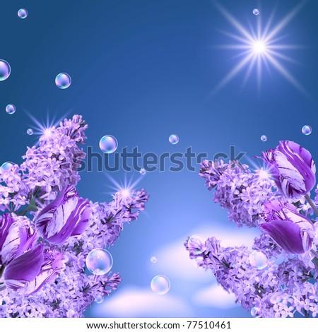 Lilac, tulip, magnolia, bubbles  and sun - stock photo