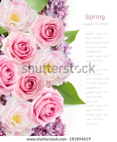 Lilac, tulips and rose flower isolated on white background - stock photo