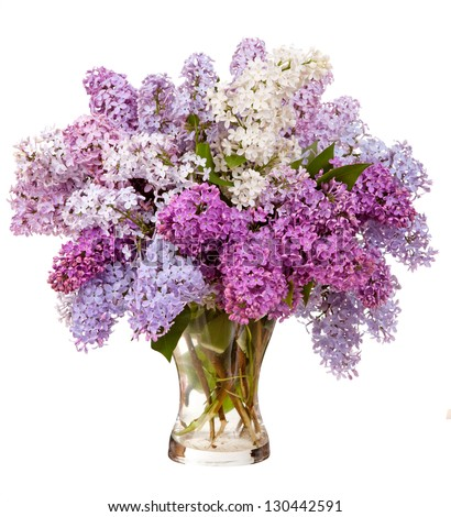 Lilacs in a glass vase