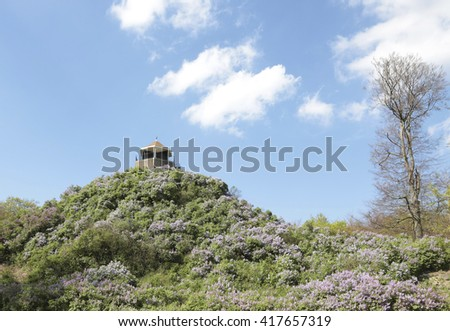 Lilacs mountain on royal estate de Horsten in the Netherlands - stock photo