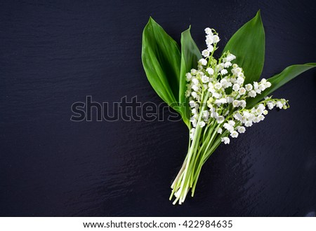 lilies of the valley on chalkboard - stock photo