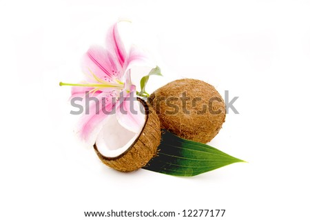 Lilly flower and coco nuts with green leaf - stock photo