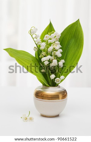 Lilly of the Valley in vase with window light - stock photo