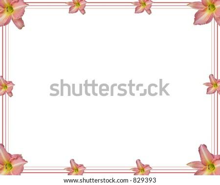 Lily border - stock photo