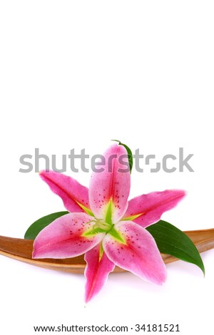 Lily flower set on a dried coco leaf, isolated over white - stock photo