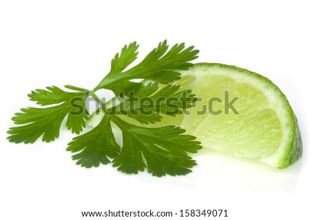 Lime and cilantro or coriander isolated on white. - stock photo
