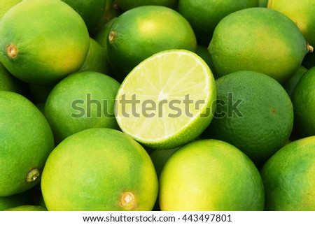 Lime citrus fruits close up - stock photo