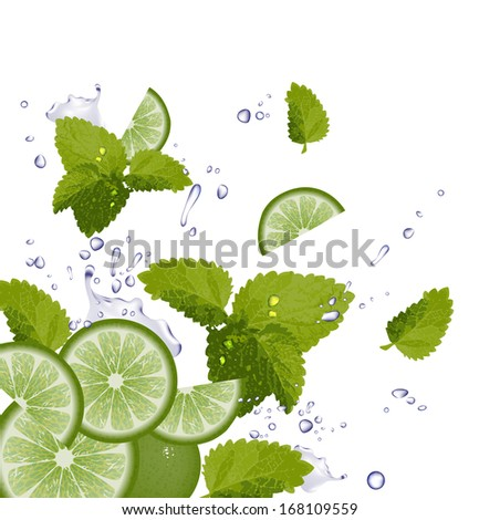 Lime, Mint and splash of water. Raster version of vector illustration  - stock photo