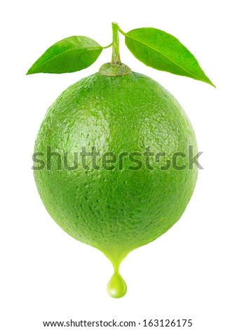 Lime with a drop of juice isolated on white - stock photo