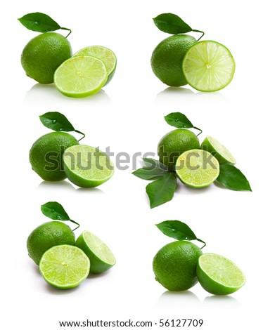limes collection - stock photo