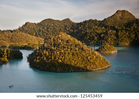 Limestone islands in Wayag, Raja Ampat, Indonesia, are now covered by tropical vegetation.  They were once below the waterline and originally made by reef organisms. - stock photo