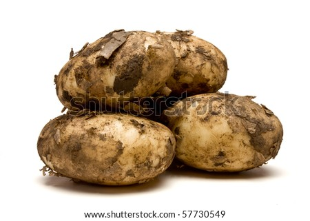 Lincoln new potatoes from low perspective isolated against white background. - stock photo