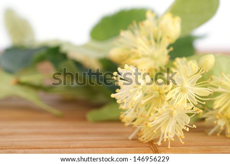 linden flowers on wooden table - stock photo