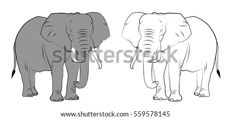 Line drawing of elephants - Colored and Black & White.