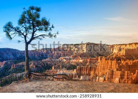 Line of Beautiful Pinnacles of Bryce Canyon National Park, Utah, USA. Horizontal Image Composition - stock photo