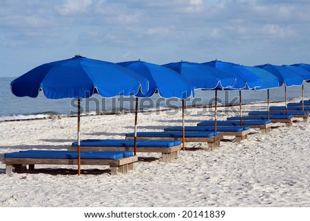 Line of Blue beach chairs on Florida's Culf Coast. - stock photo