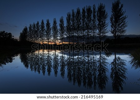 Line of trees reflected on lake at dusk - stock photo