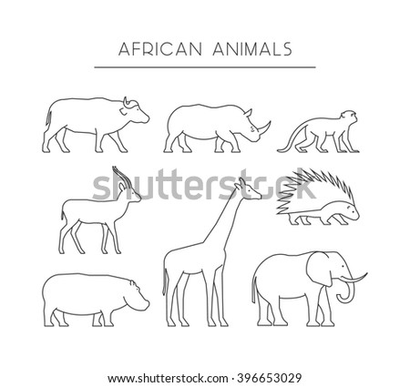 Line set of african animals. Linear silhouettes african animals isolated on a white background. Outline icons african animals. - stock photo