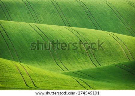 Lines and waves fields, South Moravia, Czech Republic - stock photo