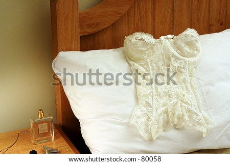 Lingerie on a pillow - stock photo