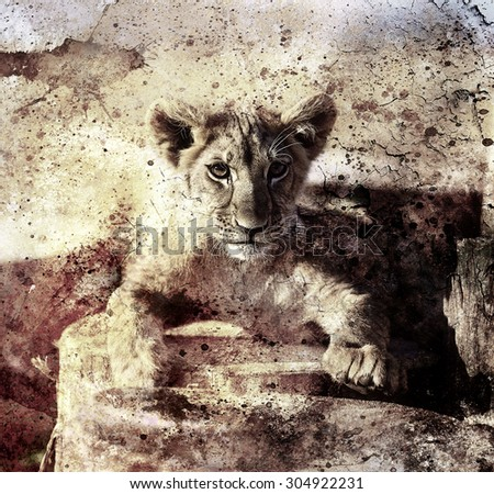 Lion cub photos and painting Abstract Collage. Eye contact. Sepia vintage picture. - stock photo